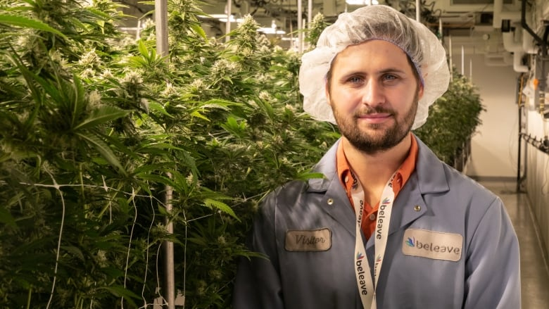 canada-s-first-phd-in-cannabis-horticulture